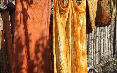 Sunny Sunday dye day!